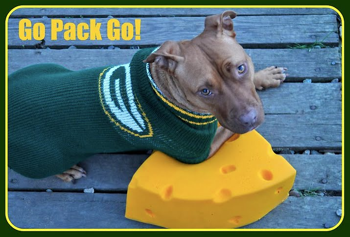 Image result for image, photo, picture, green bay packer dog
