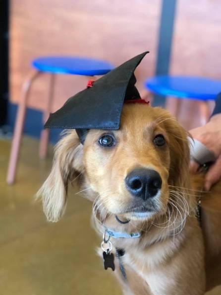 Finn Kretz Graduation